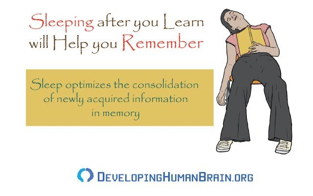 sleep as memory enhancer